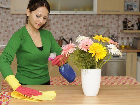 Вытирайте пыль минимум 2 раза в неделю