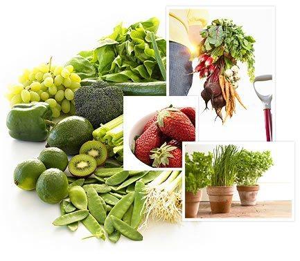 Приобретайте продукты на фермерских хозяйствах, если есть такая возможность