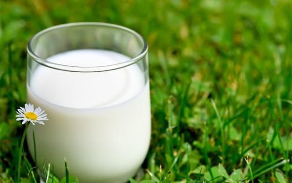 Молоко, как и фрукты, очень самодостаточный продукт, лучше ни с чем не сочетать