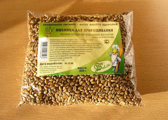 Можете купить простые зерна пшеницы, они тоже годятся для проращивания