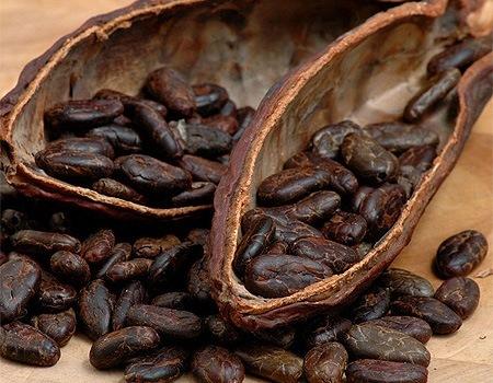 Спелые какао-бобы