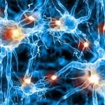 Витамины для поддержания нервной системы
